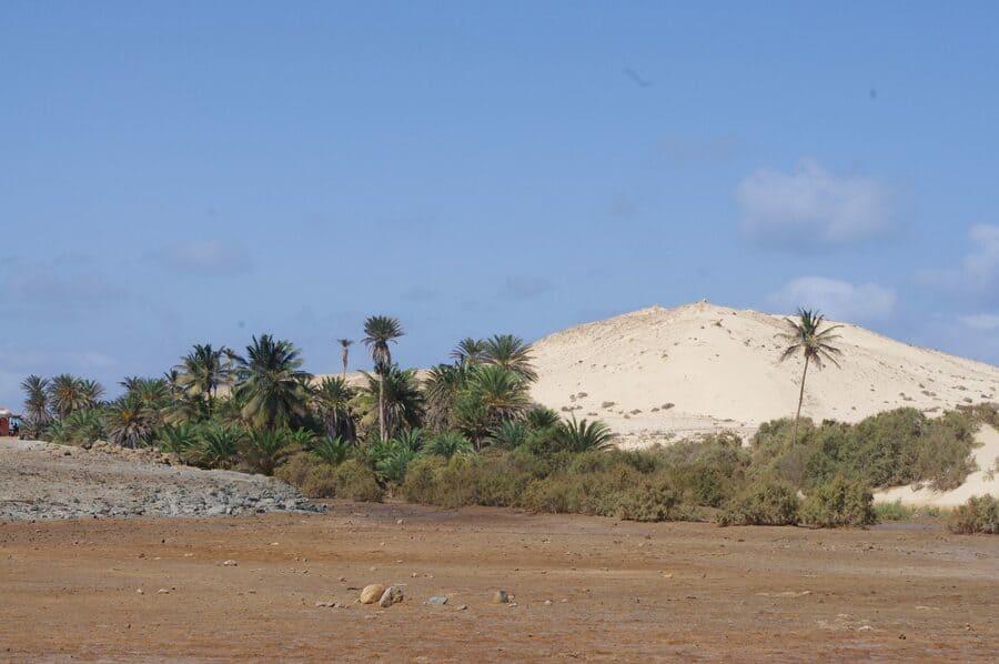 Reserva natural Tartaruga, Boa Vista, Cabo Verde